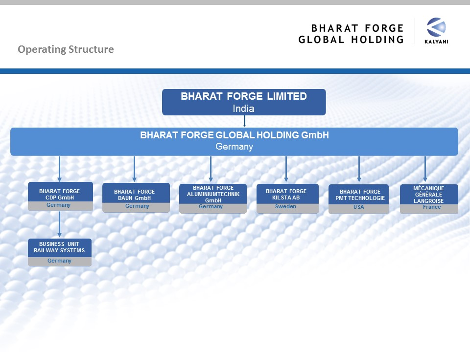Organization chart Bharat Forge Global Holding